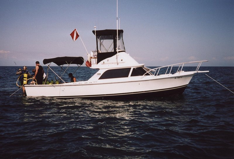 009 1967 31 bertram 1965 31 bertram sportfish bertram 31 wiring diagram at nearapp.co